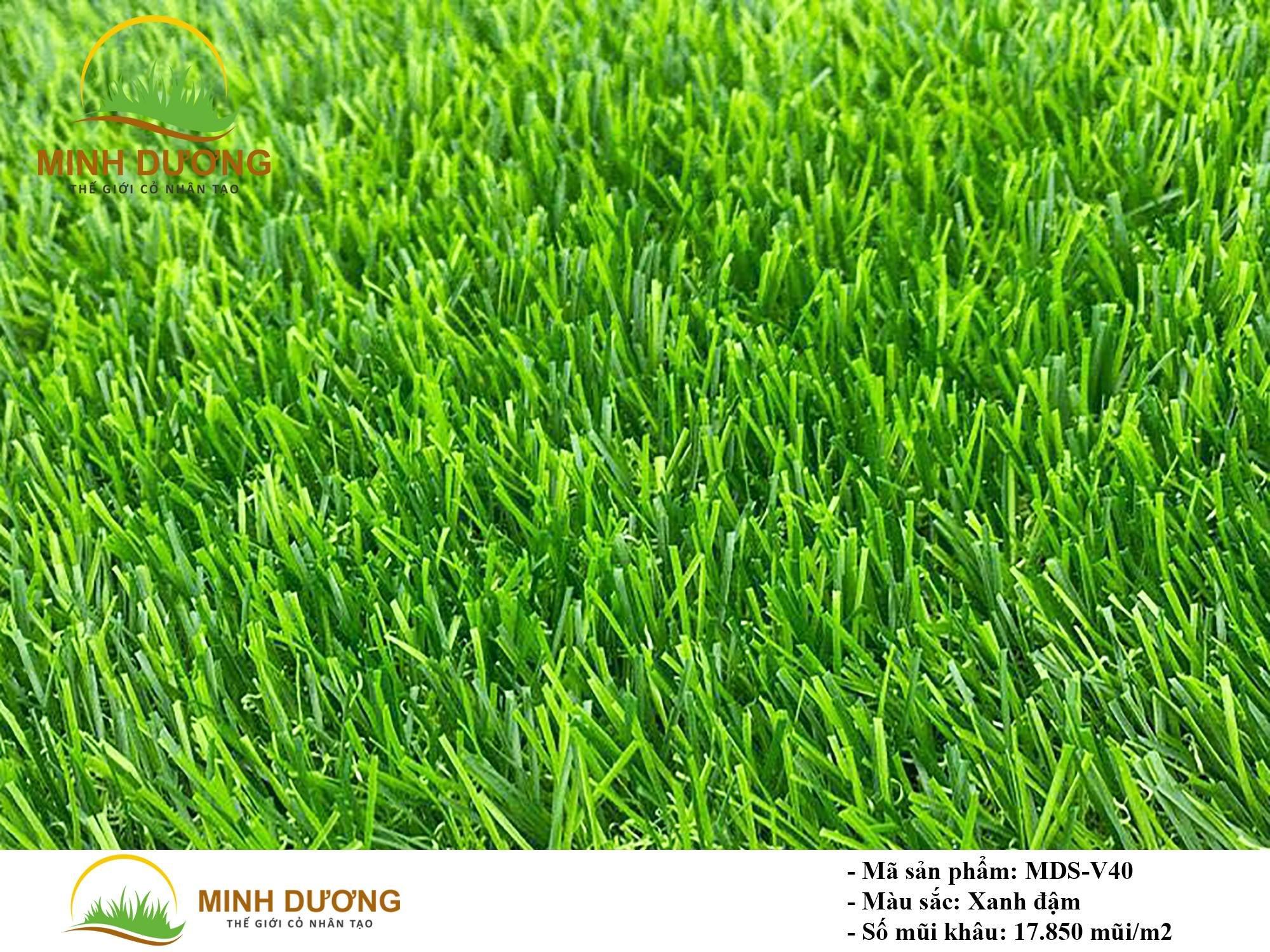 Mô tả sản phẩm cỏ nhân tạo MDS-V40