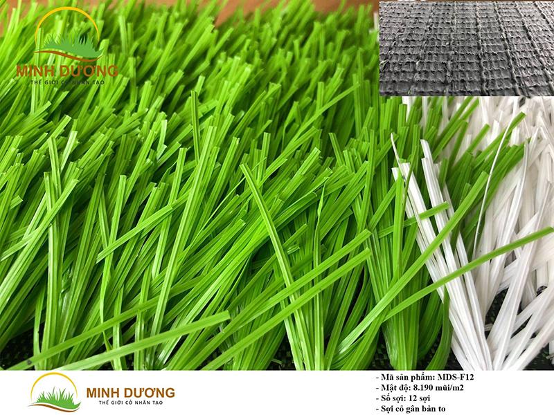 Sợi cỏ gân bản to hài hòa màu sắc tươi sáng